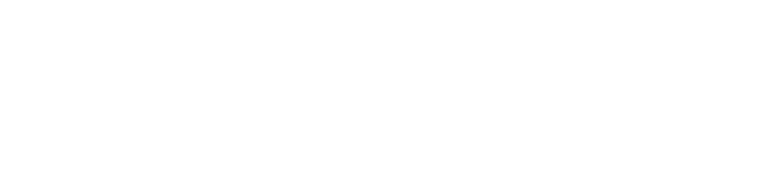 HoloForge